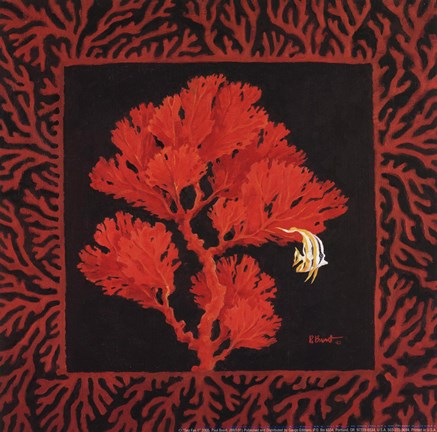 Framed Sea Fan II Print