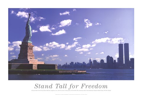 Framed Stand Tall for Freedom Print