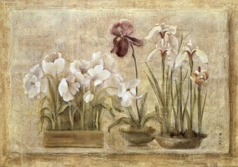 Asian Florals Fine Art Print By Cheri Blum At