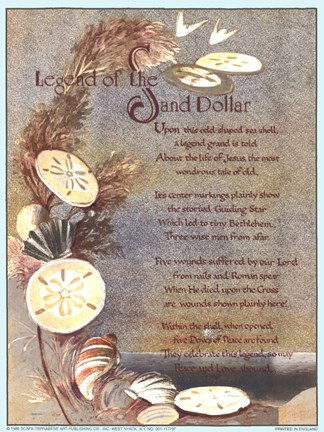 Legend Of Sand Dollar Fine Art Print By Unknown At