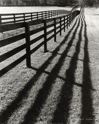 Framed Fences And Shadows, Florida Print