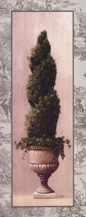 Framed Topiary and Toile lII Print