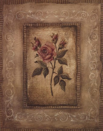 Framed Savin Rose - Mini Print