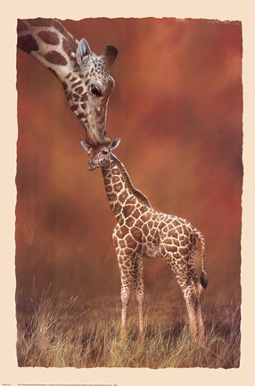 Framed Giraffe Kiss Print