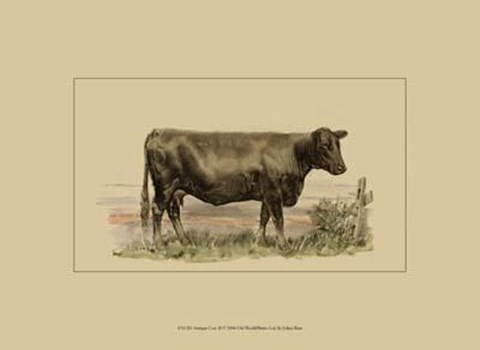 Framed Antique Cow II Print