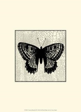 Framed Classical Butterfly II Print