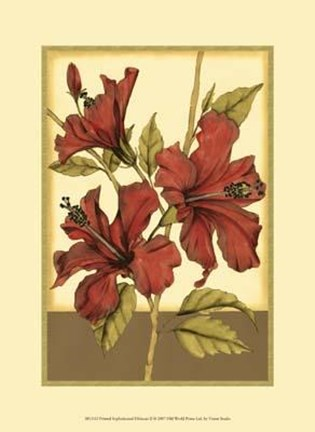Framed Printed Sophisticated Hibiscus II Print