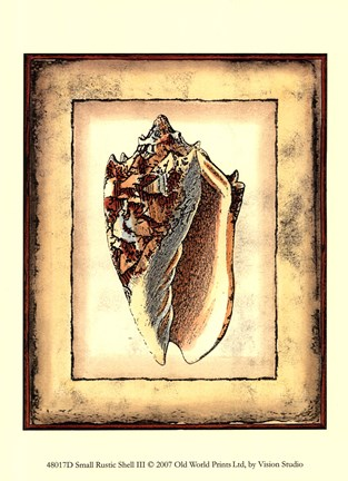 Framed Small Rustic Shell III Print
