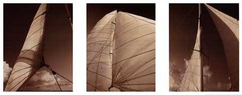 Framed Windward Sails Triptych Print