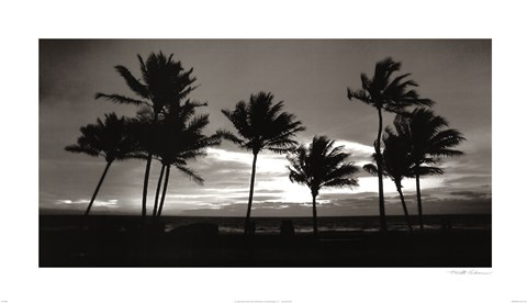 Framed Sunrise Palms Print