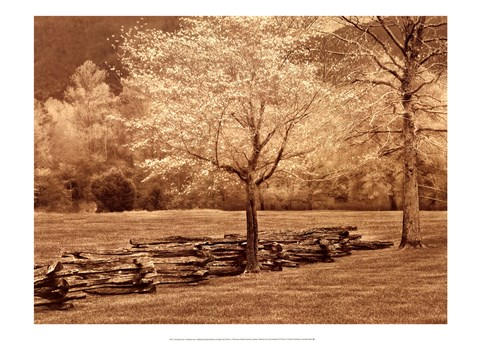 Framed Smokies Fence Print