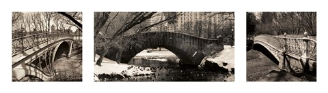 Framed Central Park Bridges Print