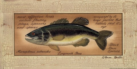 Framed Large Mouth Bass Print