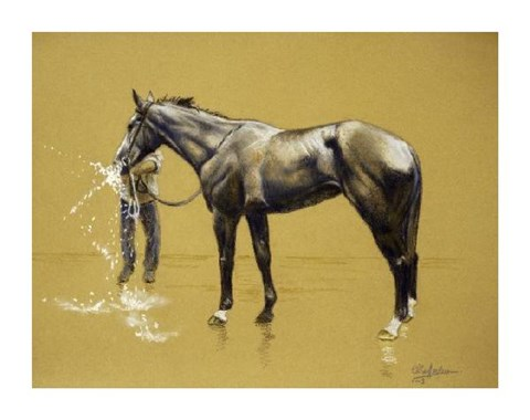Framed Bathing Race Horse II Print