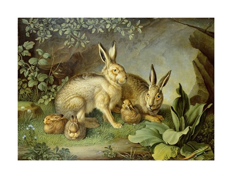 Framed Hares and Leverets In a Rocky Lair Print