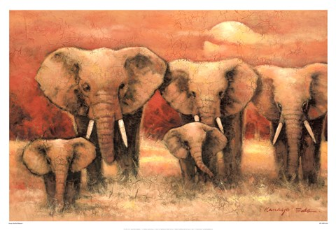 Framed Bull Elephants Print
