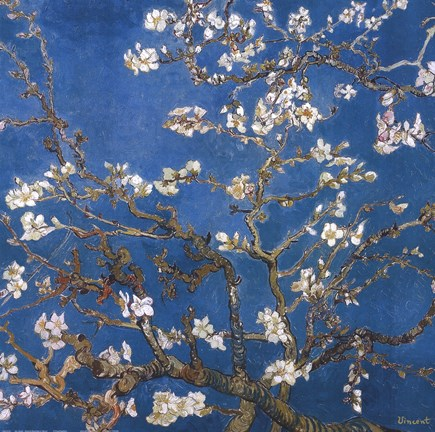 Framed Blossoming Almond Tree, Saint-Remy, c.1890 Detail Print
