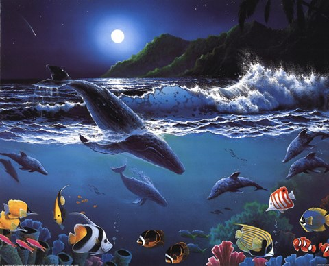 Framed Moonlit Sealife Print