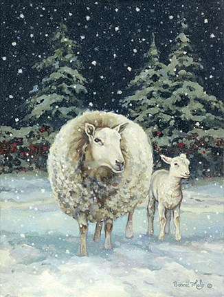 Snowballs Fine Art Print By Bonnie Mohr At Fulcrumgallery Com