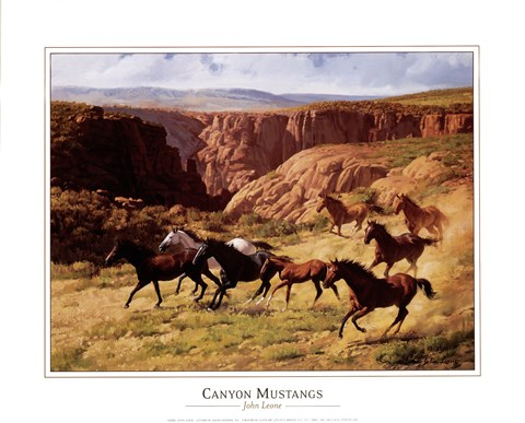Framed Canyon Mustangs Print