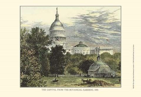 Framed Capitol From the Botanical Gardens Print