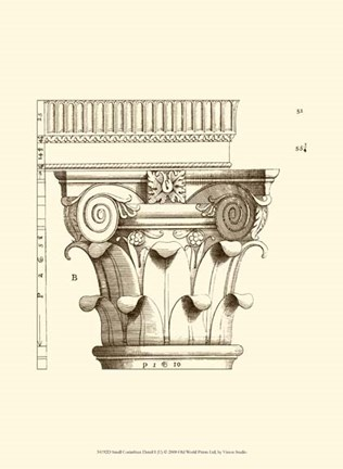 Framed Small Corinthian Detail I (U) Print