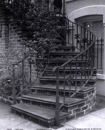 Framed Savannah Stairs III Print