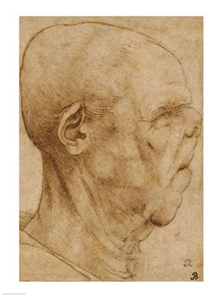 Framed Caricature of the head of an old man, in profile to the right, c.1507 Print