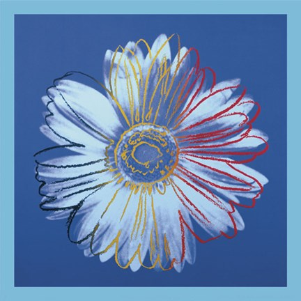 Framed Daisy, c.1982 (blue on blue) Print
