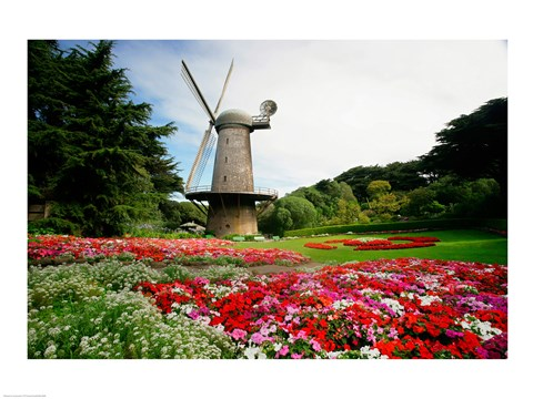 Framed Low angle view of a windmill in a park, Golden Gate Park, San Francisco, California, USA Print