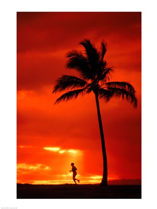 Framed Silhouette of a man running by a palm tree at sunset, Maui, Hawaii, USA Print