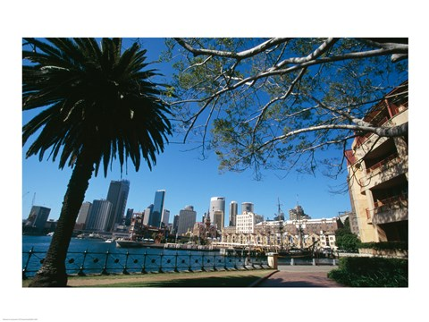 Framed Buildings on the waterfront, Sydney, New South Wales, Australia Print