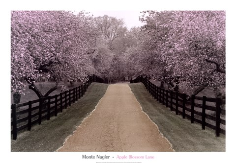 Framed Apple Blossom Lane Print