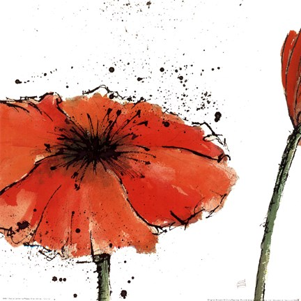 Framed Not a California Poppy III on White Print