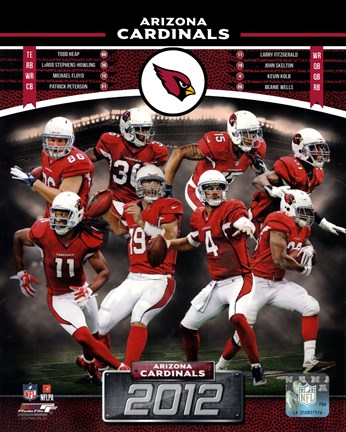 Framed Arizona Cardinals 2012 Team Composite Print