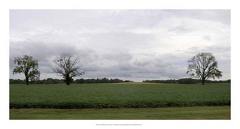 Framed Calm Before The Storm I Print
