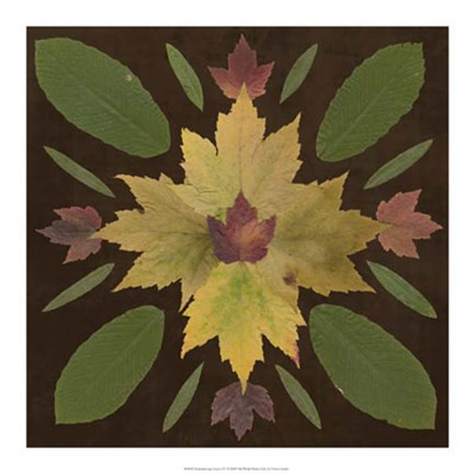 Framed Kaleidoscope Leaves IV Print