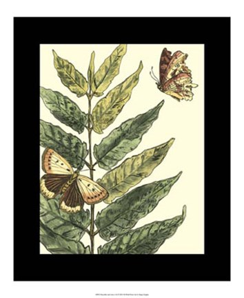 Framed Butterflies & Leaves I Print