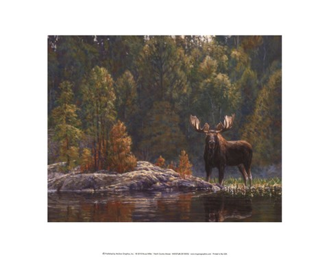 Framed North Country Moose Print
