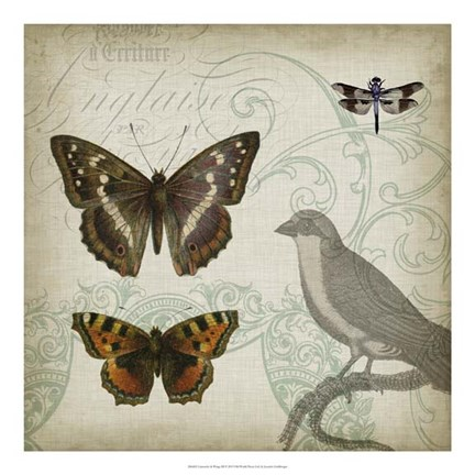 Framed Cartouche & Wings III Print