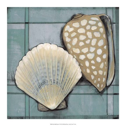 Framed Seashell Sketch I Print