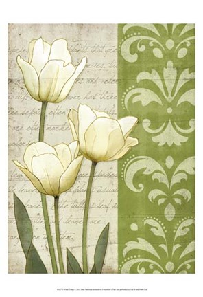 Framed White Tulips Print