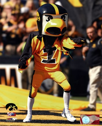 Framed Herky the Hawk, the University of Iowa Hawkeyes Mascot Print