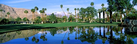 Framed Reflection of trees on water, Thunderbird Country Club, Rancho Mirage, Riverside County, California, USA Print