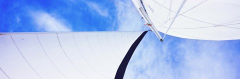 Framed Low angle view of sails on a Sailboat, Gulf of California, La Paz, Baja California Sur, Mexico Print