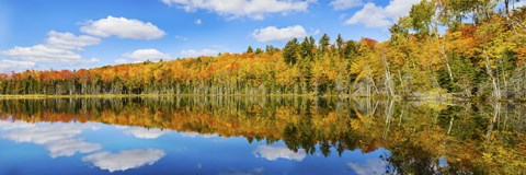 Framed Reflection of trees in a lake, Pete's Lake, Schoolcraft County, Upper Peninsula, Michigan, USA Print