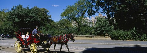 Framed Tourists Traveling In A Horse Cart, NYC, New York City, New York State, USA Print