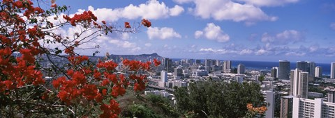 Framed Honolulu Skyline from a Distance (red flowers) Print