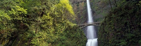 Framed Waterfall in a forest, Multnomah Falls, Columbia River Gorge, Portland, Multnomah County, Oregon, USA Print