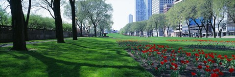 Framed Public Gardens, Loop, Cityscape, Grant Park, Chicago, Illinois, USA Print